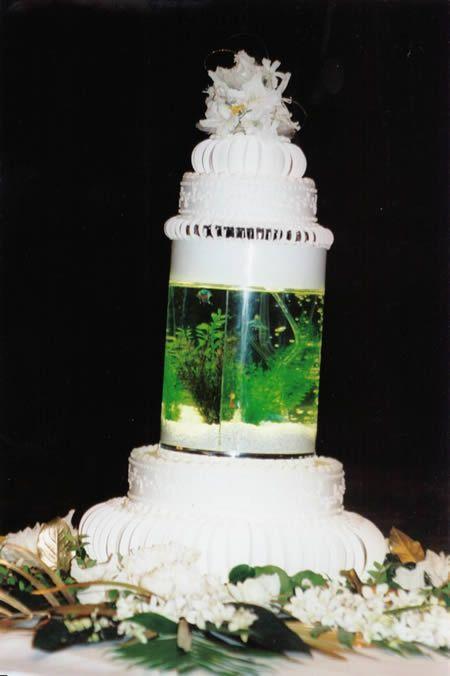 Cake Boss Live Tlc